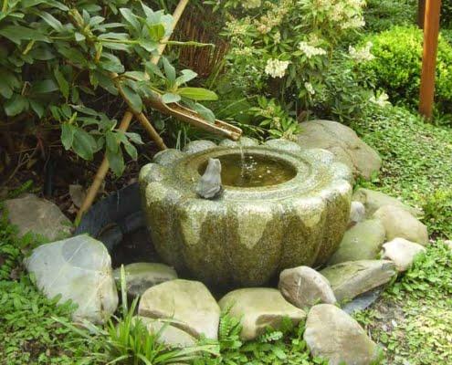 Aziatische tuin