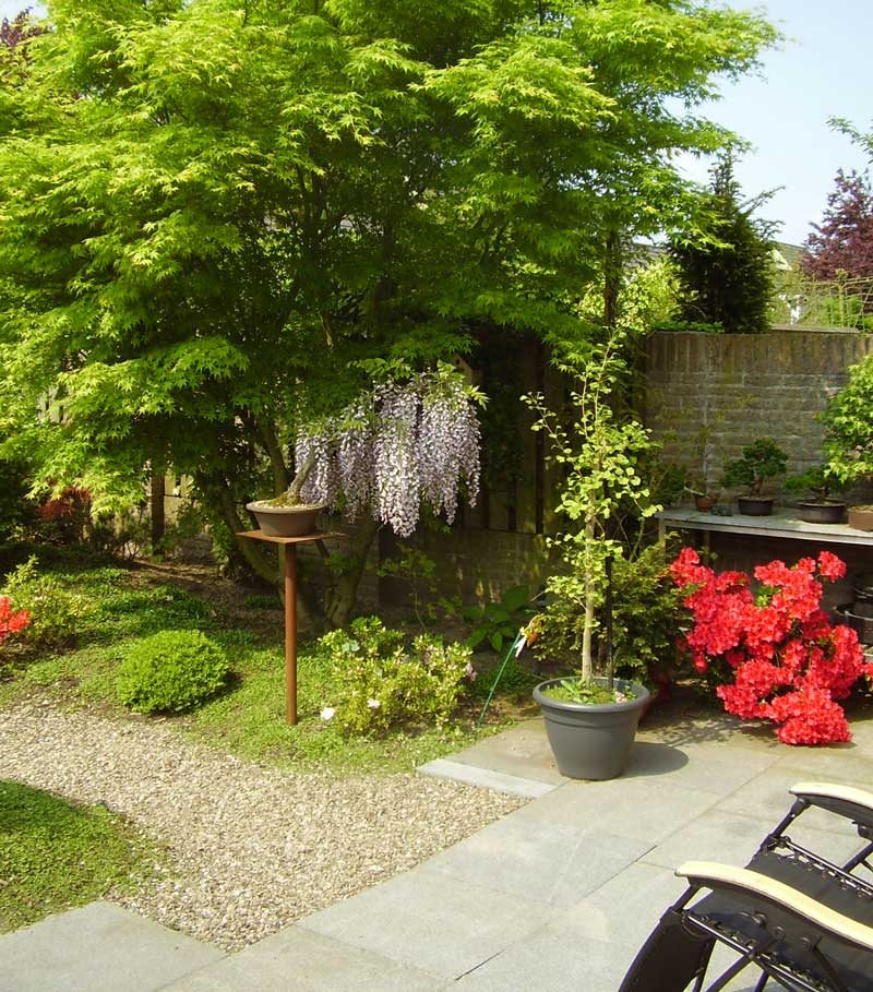 Tuinen Holland Bonsai & Landscaping